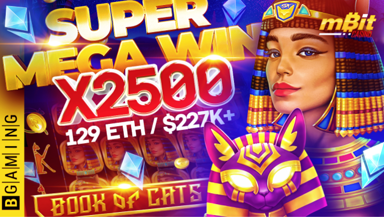 Player Wins $227k on BGaming's Book of Cats Slot