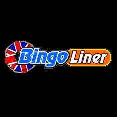 Bingo Liner Casino
