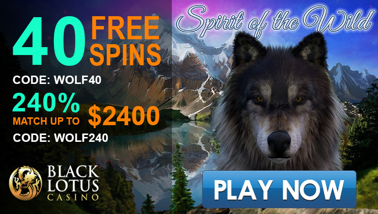 Black Lotus Casino Offers A Big Welcome Bonus Package Promotions