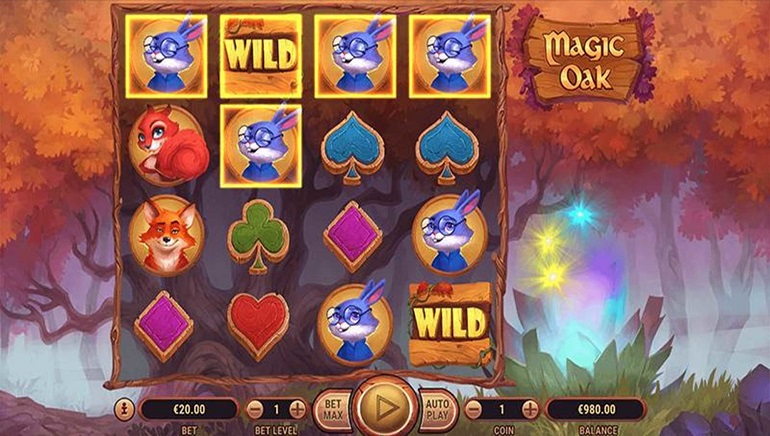 Discover an Enchanted Woodland in Habanero's Magic Oak