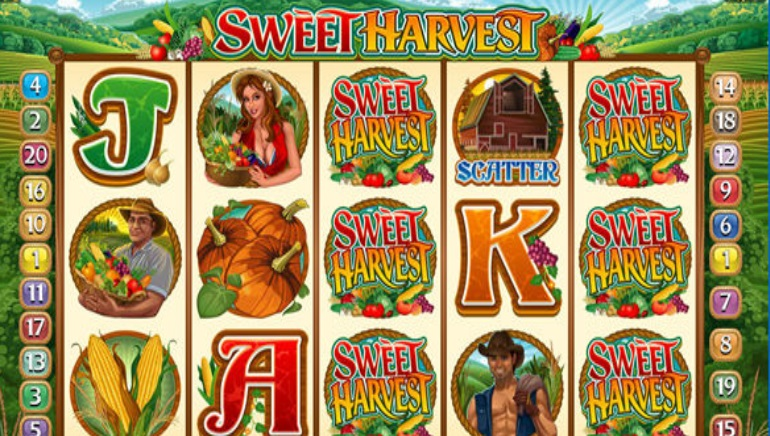 Microgaming Launches Sweet Harvest Slot Multiplayer Tournament